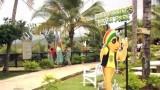 Hidden Gems: Jamaica, Pt. 2