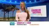 The Caribbean Diaspora Weekly – South Florida Edition (Promo)