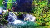 10 Exceptional Photos of Blue Hole in Ocho Rios, Jamaica