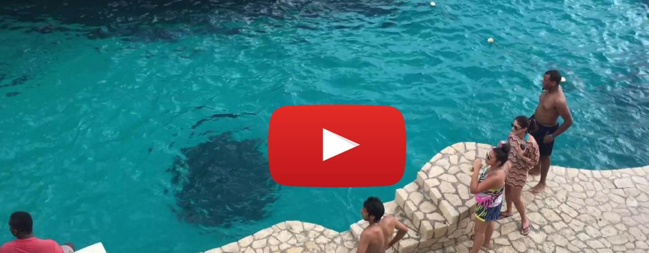 Amazing Jamaica Drone footage blue hole negril