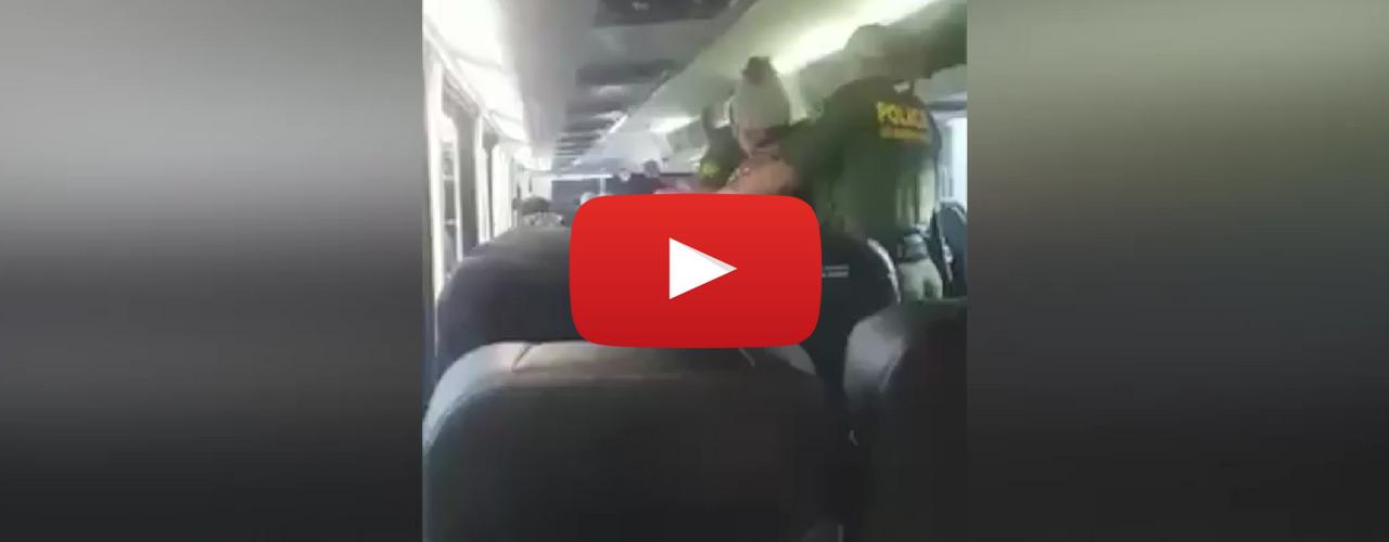 US Border patrol Jamaican grandmother