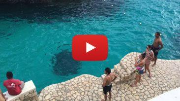 Jamaica-Drone footage-Blue Hole-Ricks Cafe-Margaritaville-Negril-Ocho Rios video